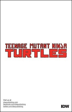 TMNT Microseries #5: Splinter preview 9