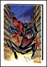 SPIDERMEN_HC