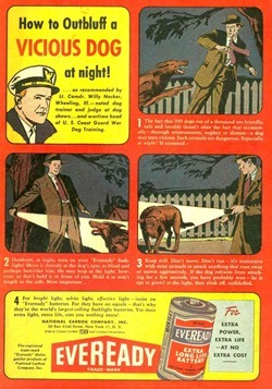EveReady Ad