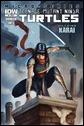 Teenage Mutant Ninja Turtles Villain Microseries #5: Karai