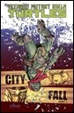 Teenage Mutant Ninja Turtles, Vol. 6: City Fall, Part 1