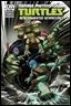 TMNT Animate15 cvrRI bb196 thumb