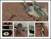 Chewbacca #1 Preview 2