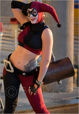 DC Doll as Harley Quinn (Photo by Bradley Cox Photography)