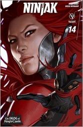 Ninjak #14 Cover A - Djurdjevic