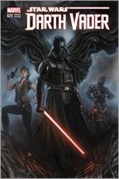 Darth Vader #25 Cover - Granov Variant