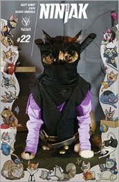 Ninjak #22 Cover - Cat Cosplay Variant